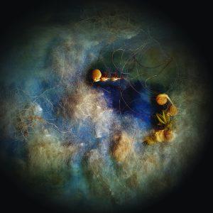 Aline Mare. Cloud Seeds